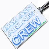 PAM ANN AIRLINES Tag